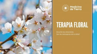 Terapia Floral Online